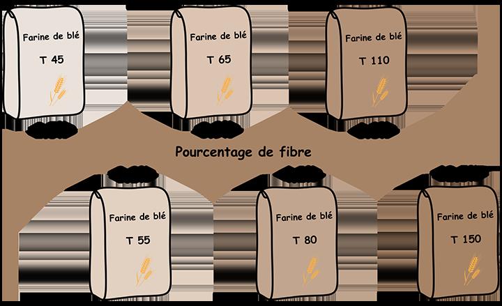 fibre redimensionné