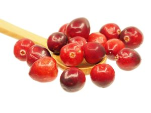 image cranberry