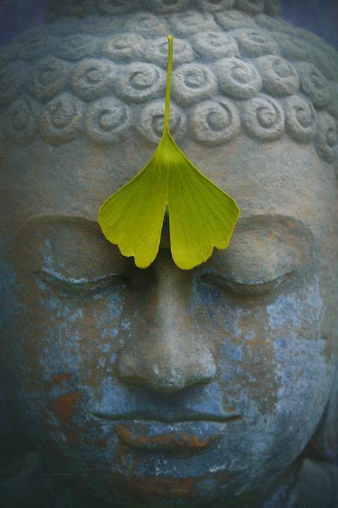 buddha 2728793 960 720