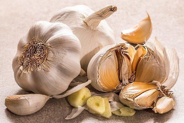 garlic 3419544 640
