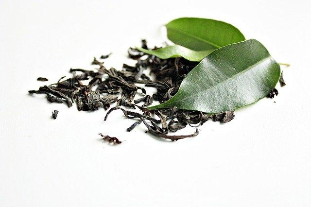 green tea 1233874 640