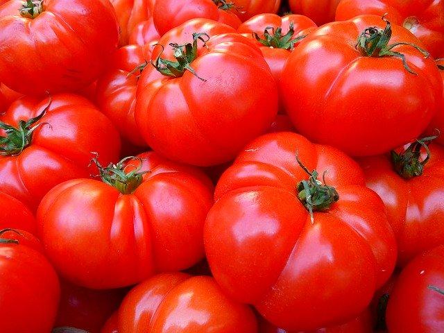 tomatoes 5356 640