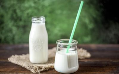 Alimentation riche en calcium