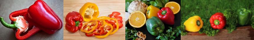 Top 10 des aliments riches en vitamine C