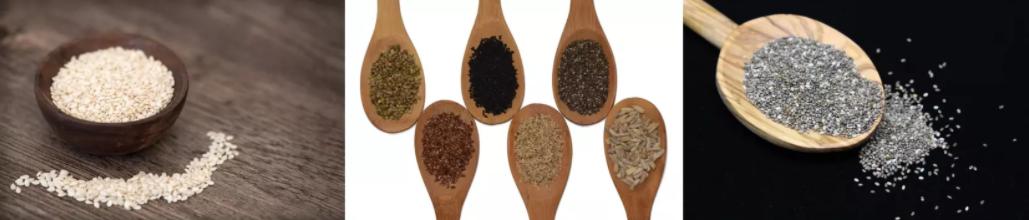 Les graines contiennent beaucoup de zinc