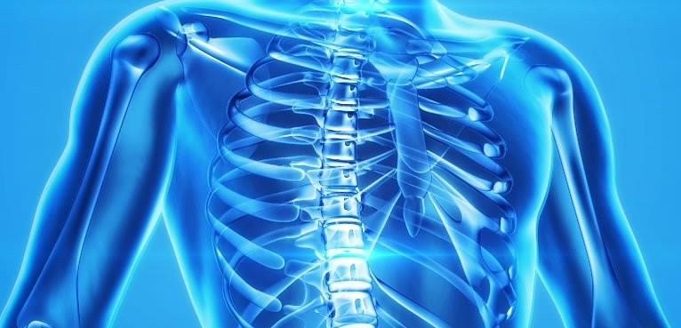 la vitamine D dans la santé des os