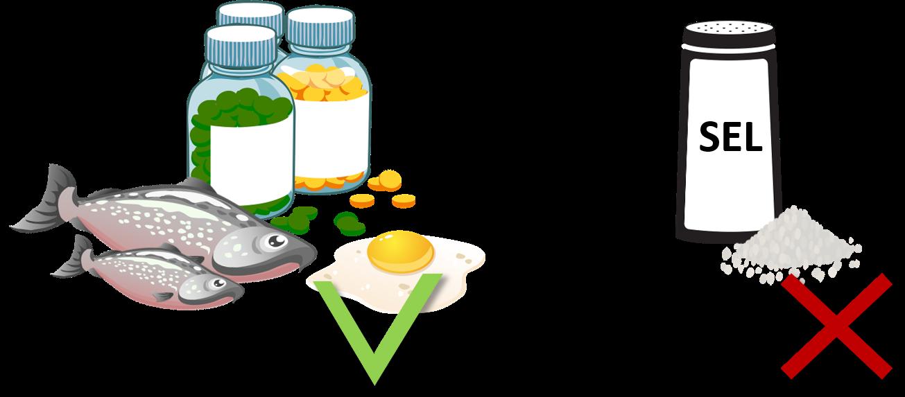 la vitamine D facilite l'absorption du calcium au contraire du sel qui l'empêche